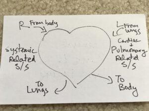 General R vs L Heart Failure Drawing